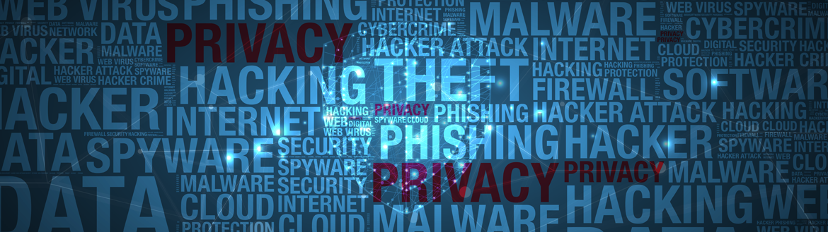 Header Image Graphic related to privacy and cyber security